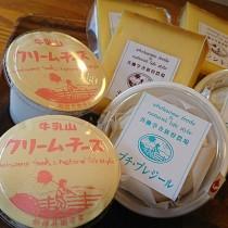 牛乳山のクリームチーズ、プチ・プレジールはもちろん♪♪夏季期限定のシントコ♪入荷しました