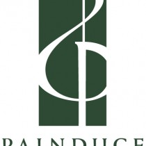 20190917Painduce-logo